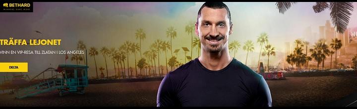 Träffa Zlatan i LA